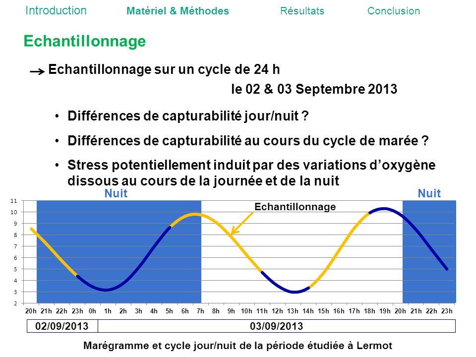 Marégramme et cycle jour/nuit de la période étudiée à Lermot