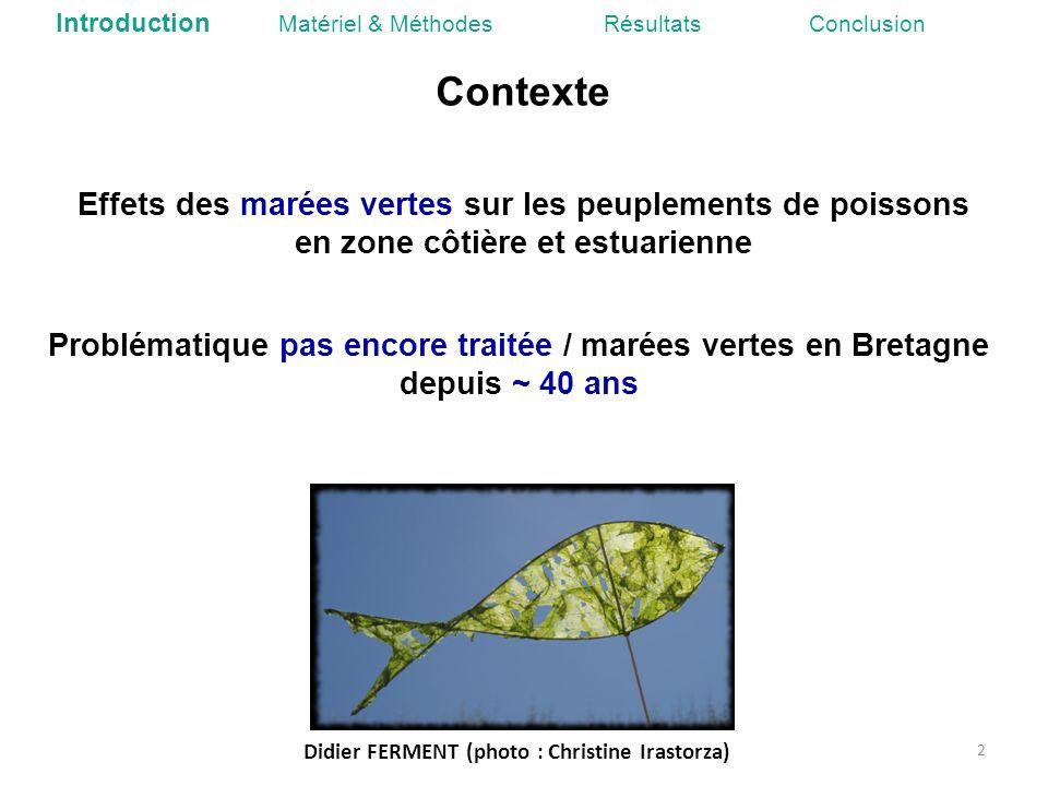 Problématique pas encore traitée / marées vertes en Bretagne