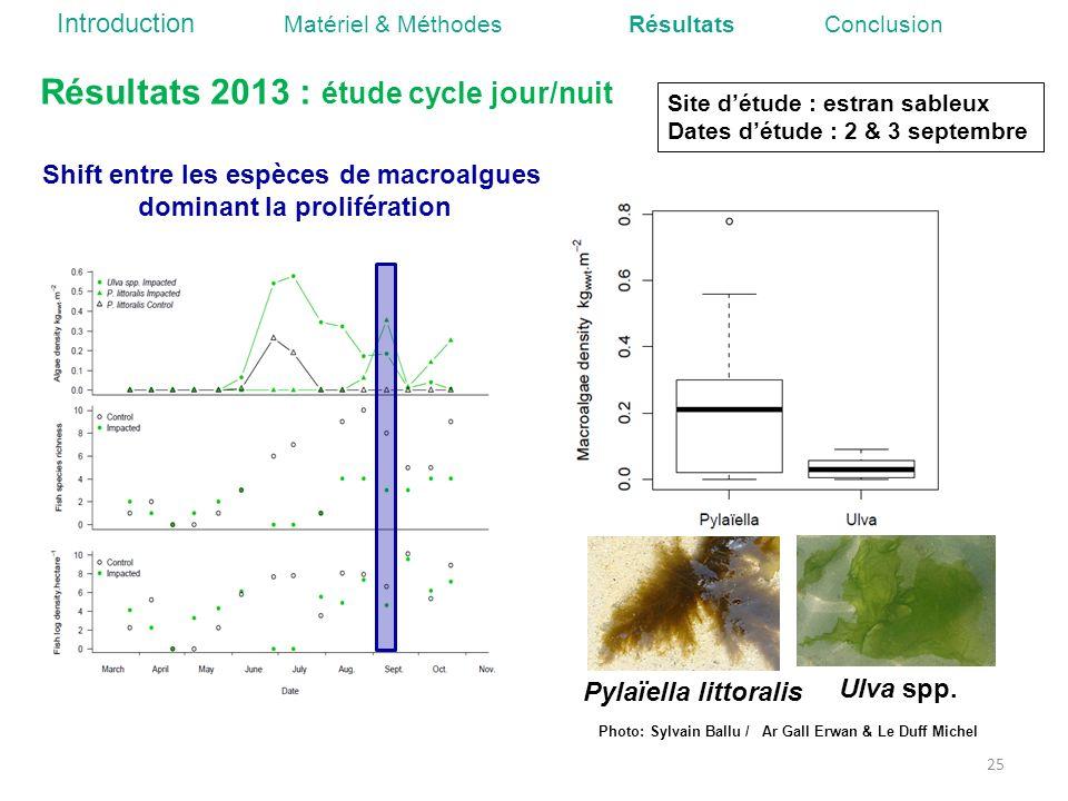 Shift entre les espèces de macroalgues dominant la prolifération