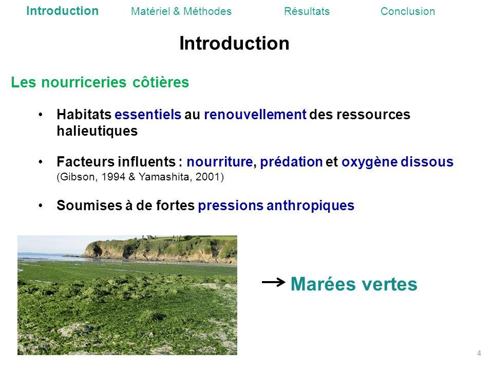 Introduction Marées vertes Les nourriceries côtières