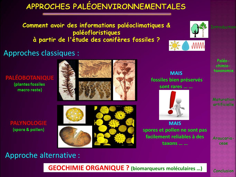 Approches paléoenvironnementales