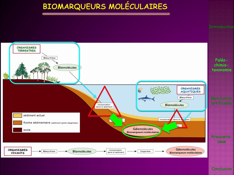 Biomarqueurs moléculaires