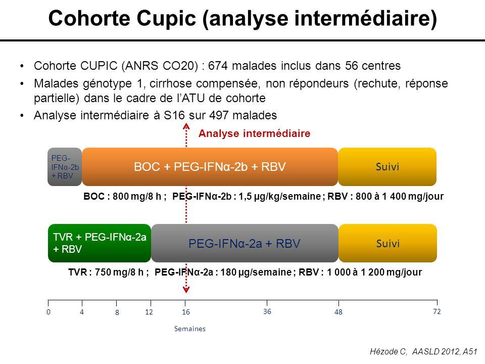 Cohorte Cupic (analyse intermédiaire)
