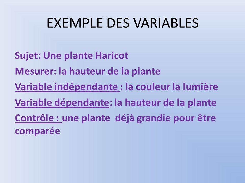 EXEMPLE DES VARIABLES Sujet: Une plante Haricot