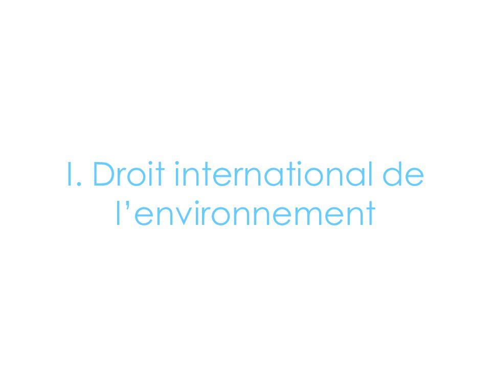 I. Droit international de l'environnement