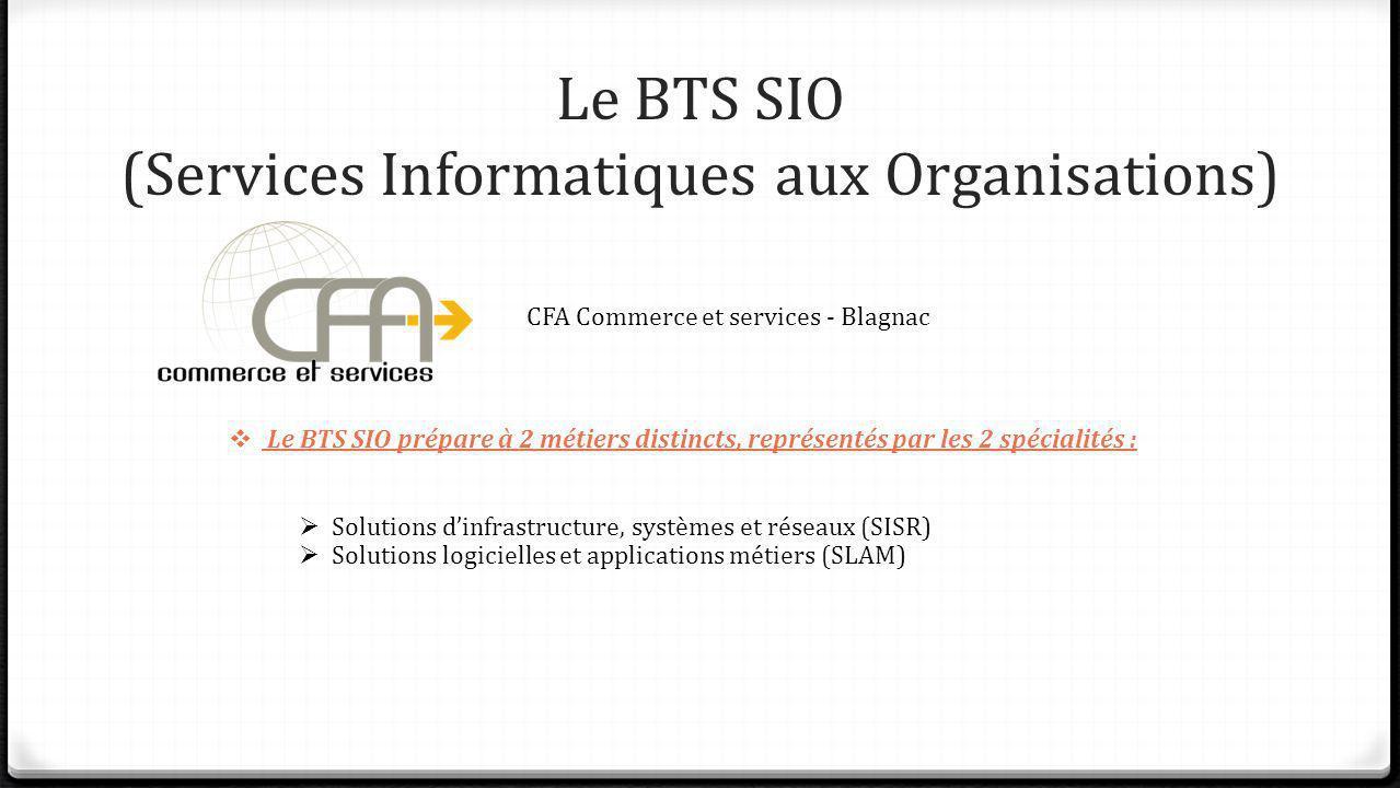 Le BTS SIO (Services Informatiques aux Organisations)