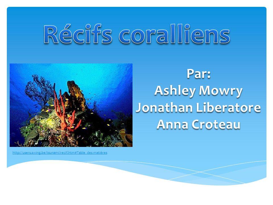 Récifs coralliens Par: Ashley Mowry Jonathan Liberatore Anna Croteau