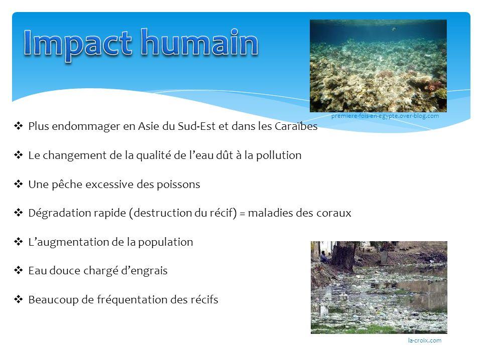 Impact humain Plus endommager en Asie du Sud-Est et dans les Caraïbes