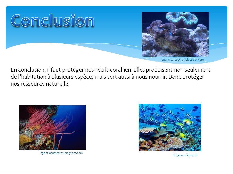 Conclusion agentssanssecret.blogspot.com.