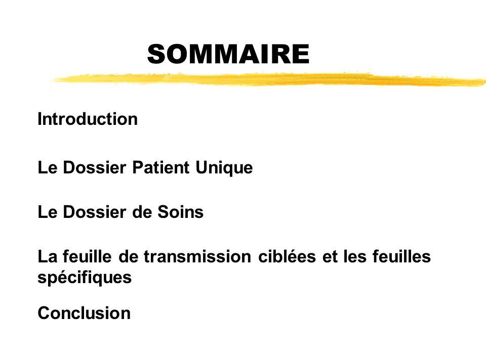 SOMMAIRE Introduction Le Dossier Patient Unique Le Dossier de Soins