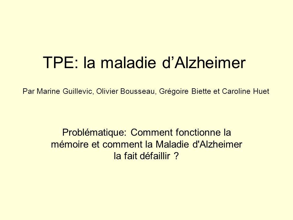 TPE: la maladie d'Alzheimer
