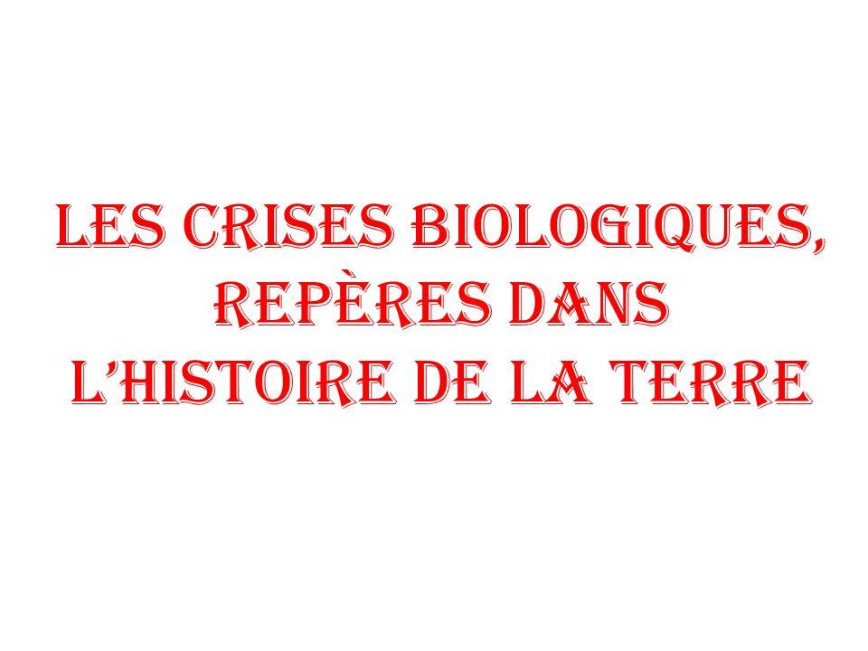 Les crises biologiques, repères dans l'histoire de la Terre