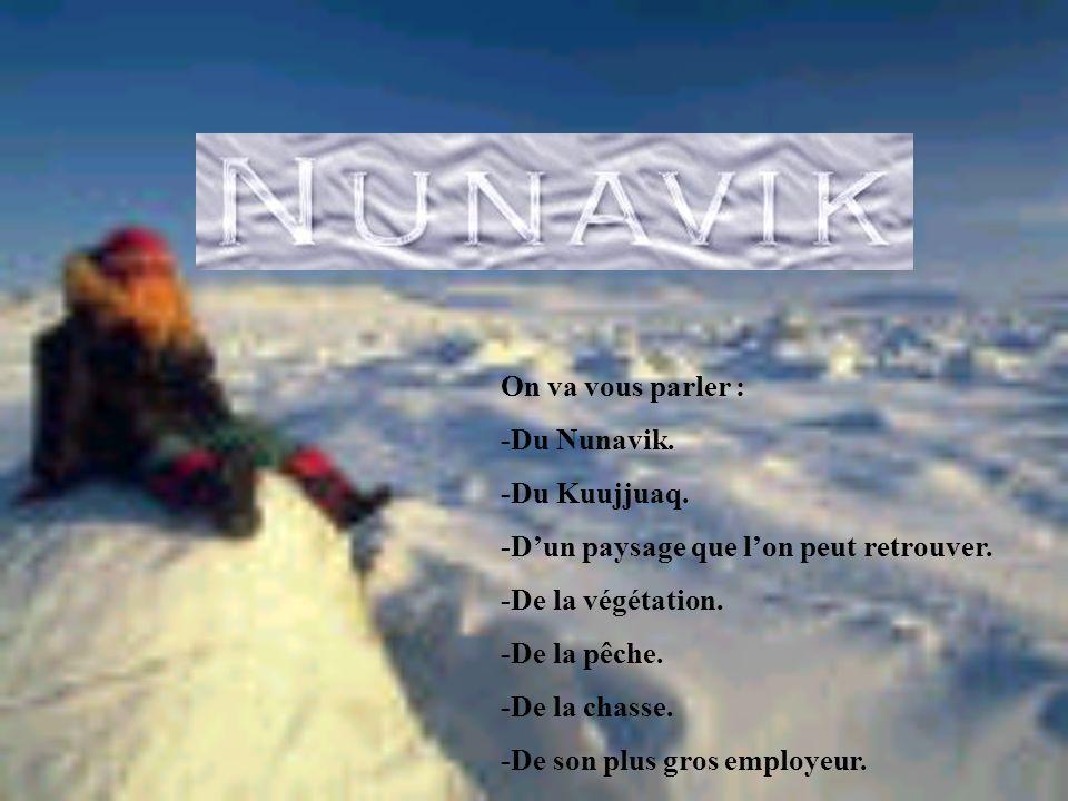 On va vous parler : -Du Nunavik. -Du Kuujjuaq. -D'un paysage que l'on peut retrouver. -De la végétation.