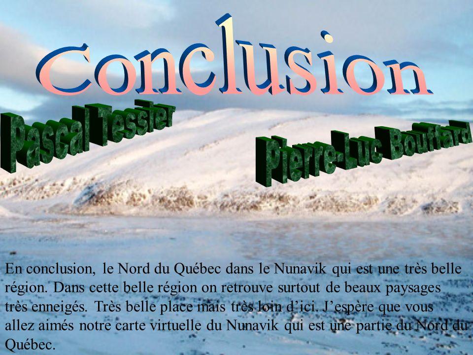 Conclusion Pascal Tessier Pierre-Luc Bouffard