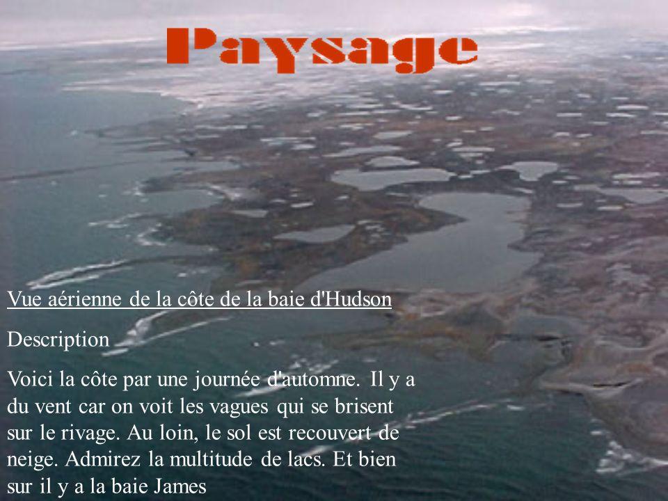 Vue aérienne de la côte de la baie d Hudson