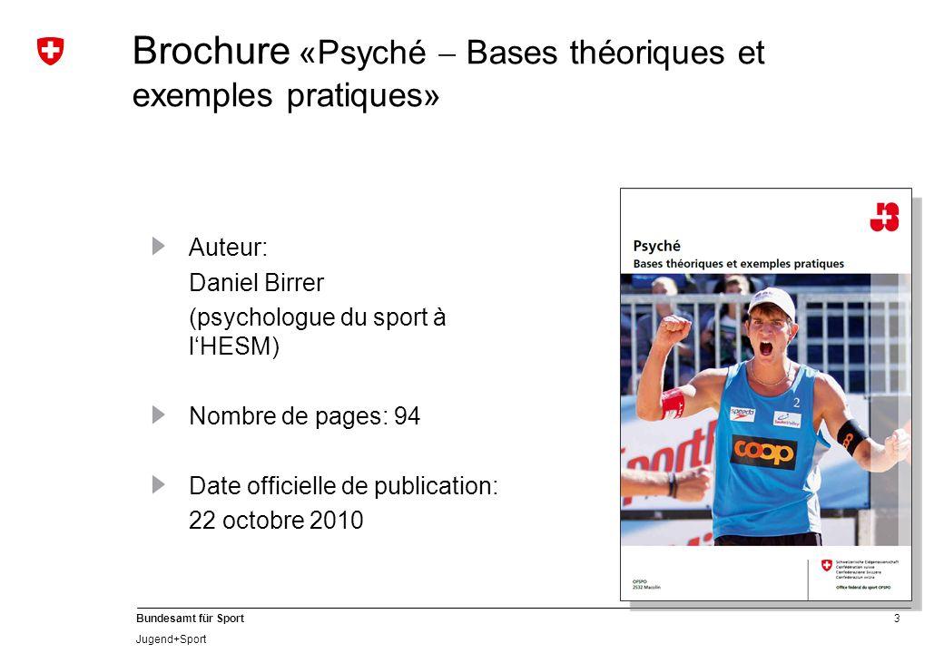 Brochure «Psyché  Bases théoriques et exemples pratiques»