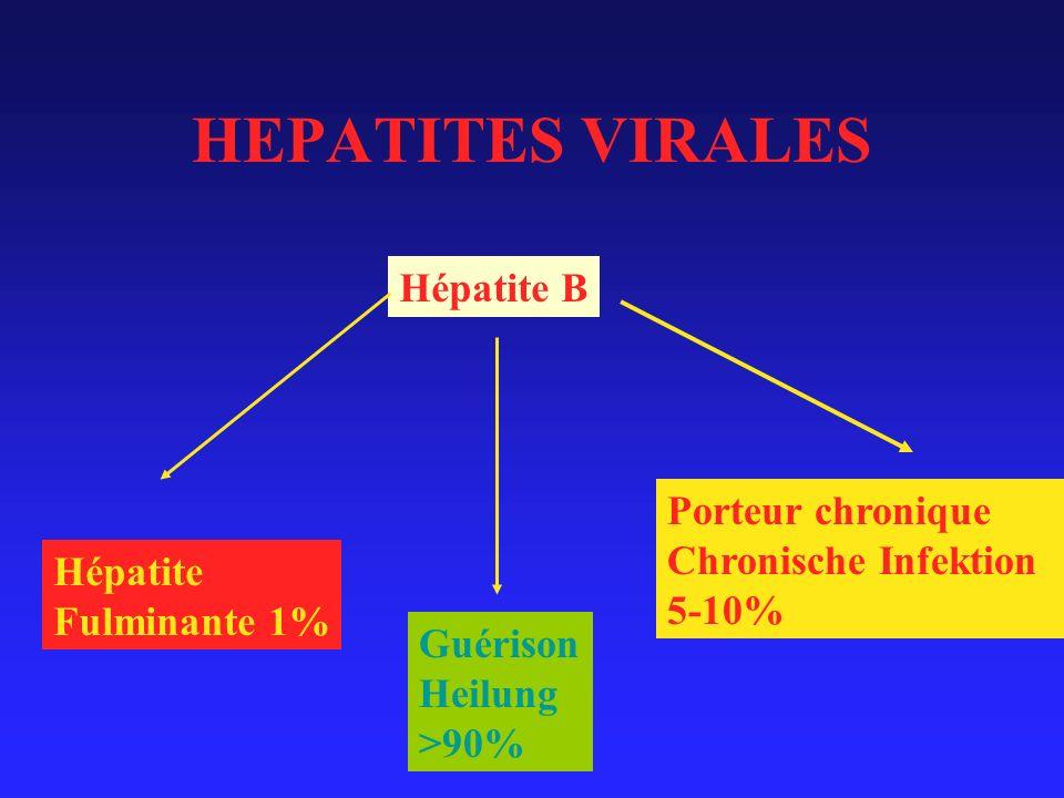 HEPATITES VIRALES Hépatite B Porteur chronique Chronische Infektion