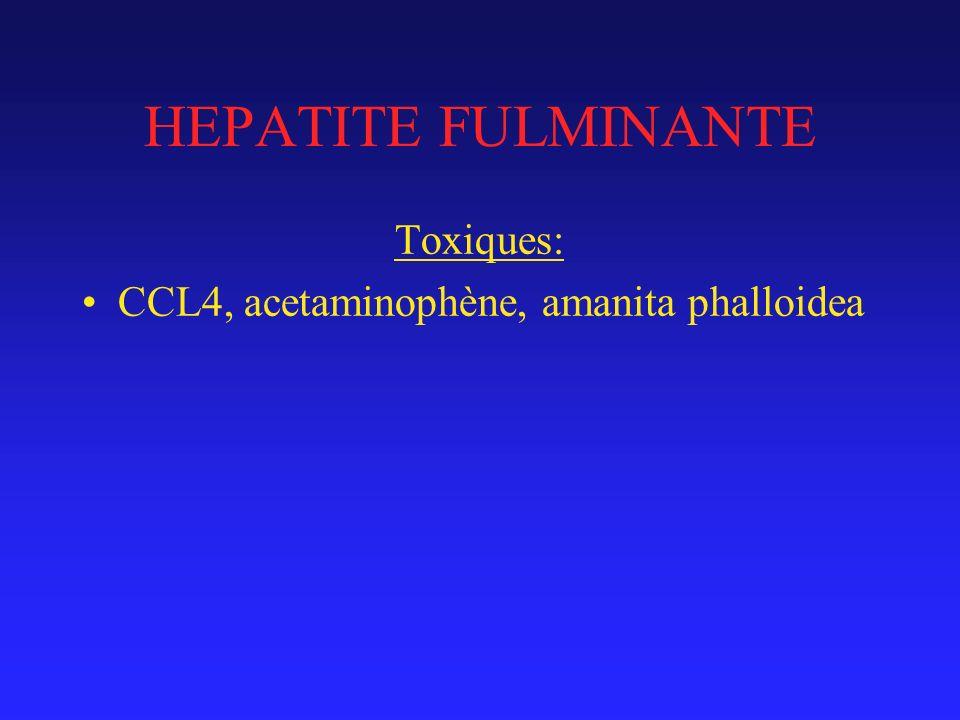 HEPATITE FULMINANTE Toxiques: CCL4, acetaminophène, amanita phalloidea