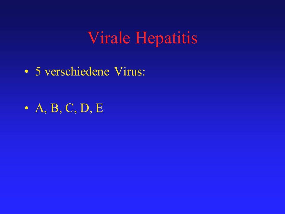 Virale Hepatitis 5 verschiedene Virus: A, B, C, D, E