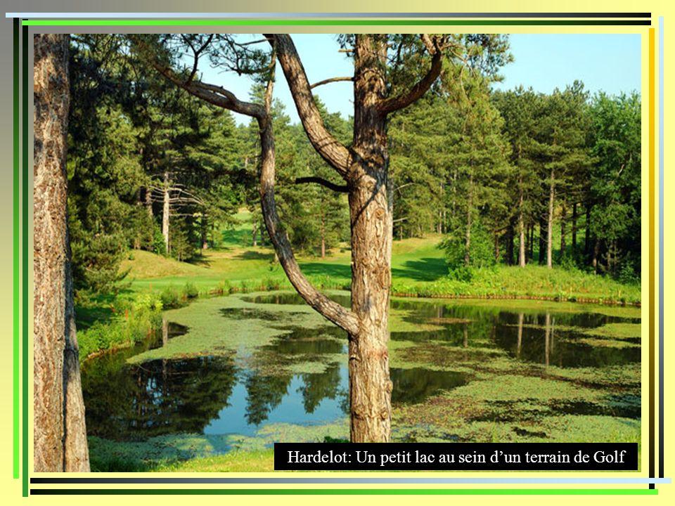 Hardelot: Un petit lac au sein d'un terrain de Golf