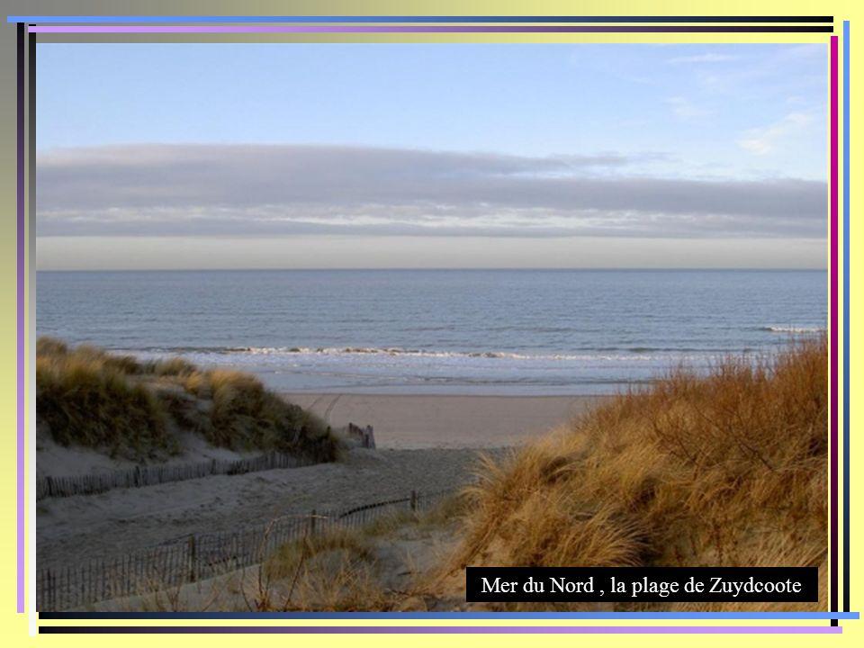 Mer du Nord , la plage de Zuydcoote