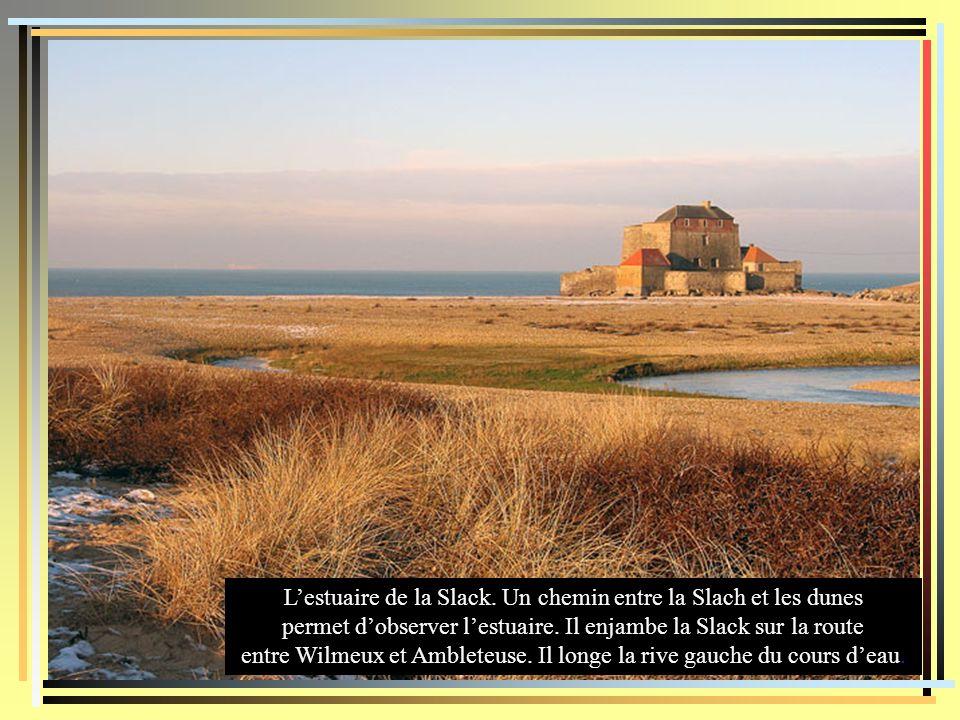 L'estuaire de la Slack. Un chemin entre la Slach et les dunes