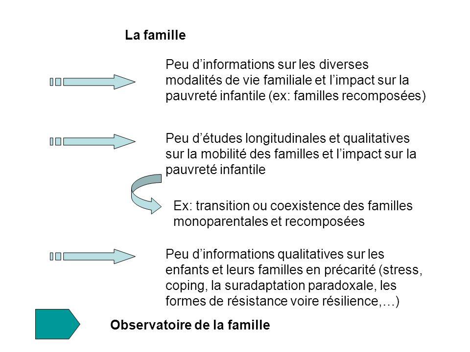 La famille Peu d'informations sur les diverses modalités de vie familiale et l'impact sur la pauvreté infantile (ex: familles recomposées)