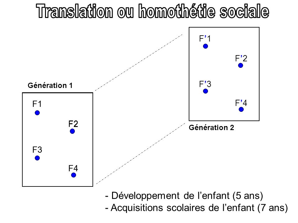 Translation ou homothétie sociale
