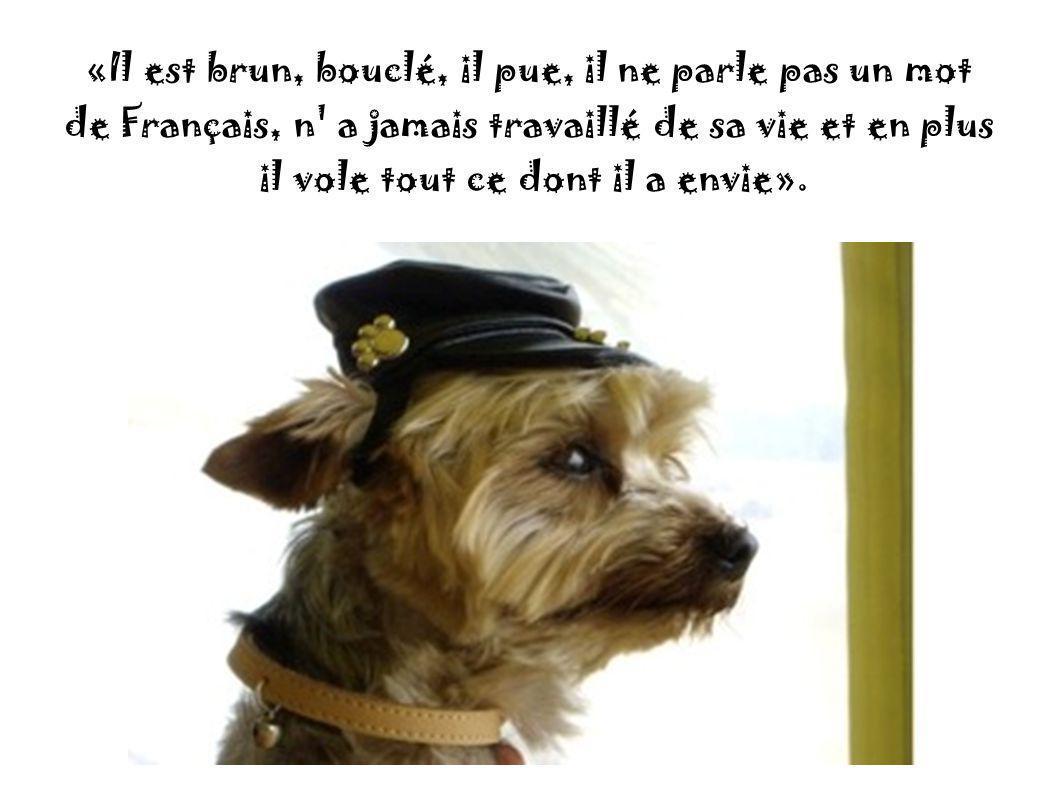 «Il est brun, bouclé, il pue, il ne parle pas un mot de Français, n a jamais travaillé de sa vie et en plus il vole tout ce dont il a envie».