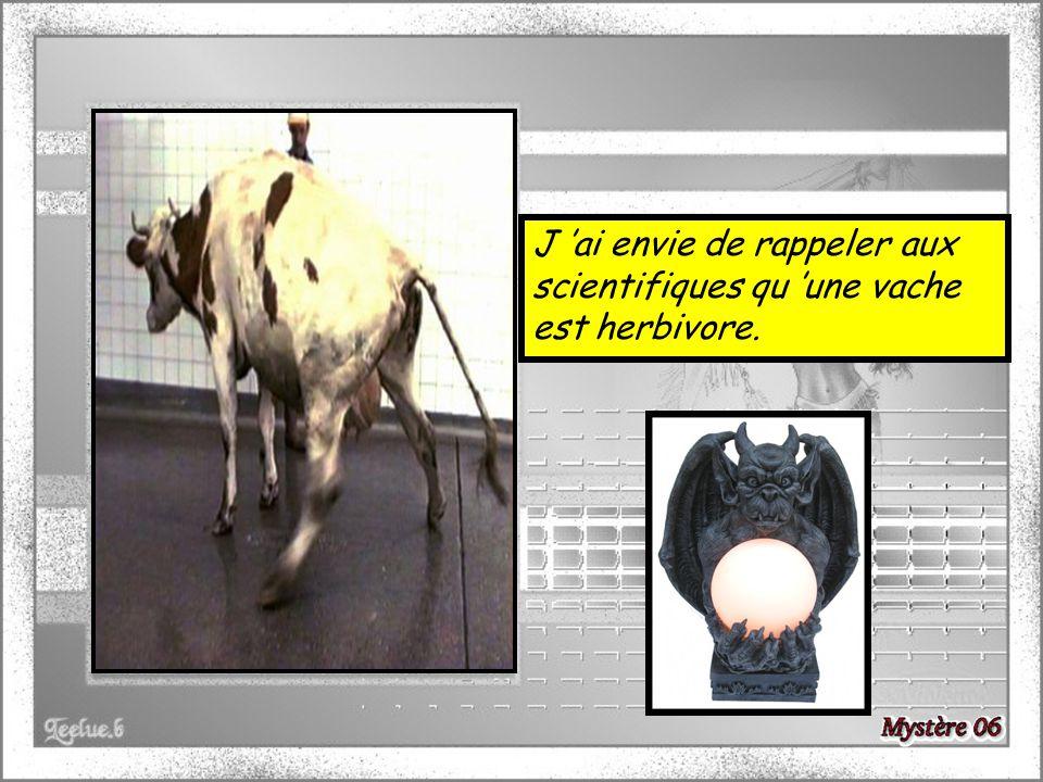 J 'ai envie de rappeler aux scientifiques qu 'une vache est herbivore.