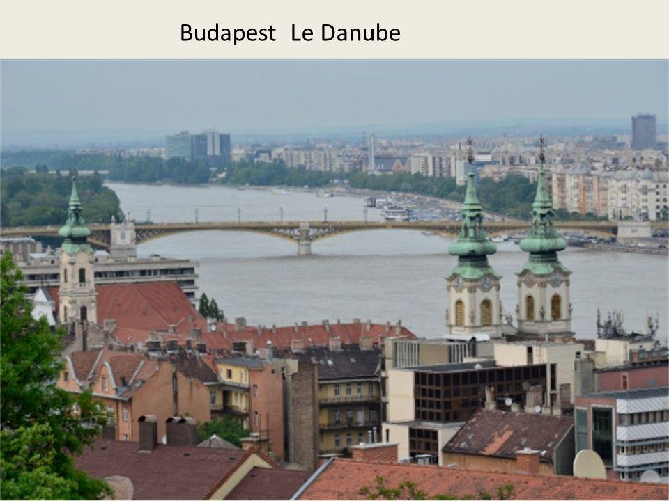 Budapest Le Danube