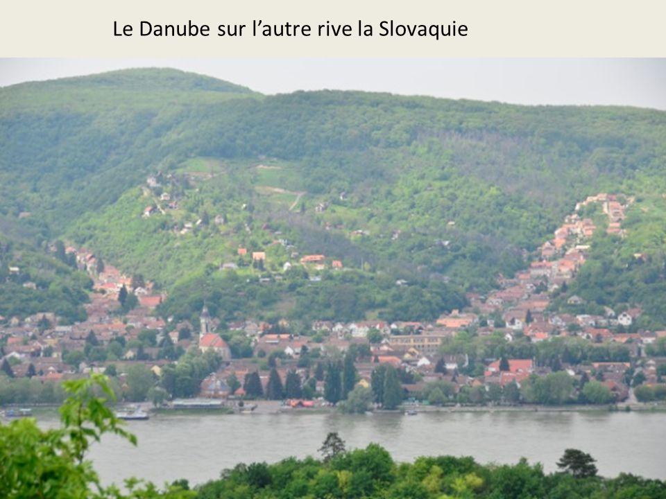 Le Danube sur l'autre rive la Slovaquie