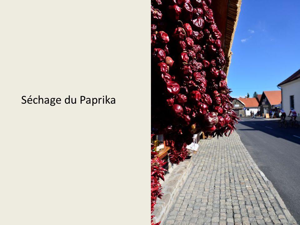 Séchage du Paprika