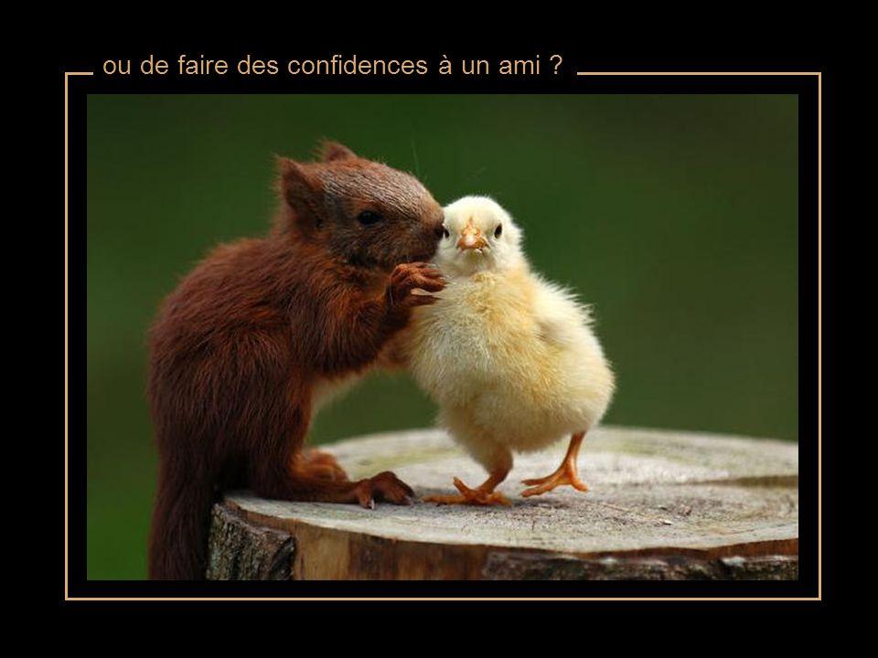 ou de faire des confidences à un ami