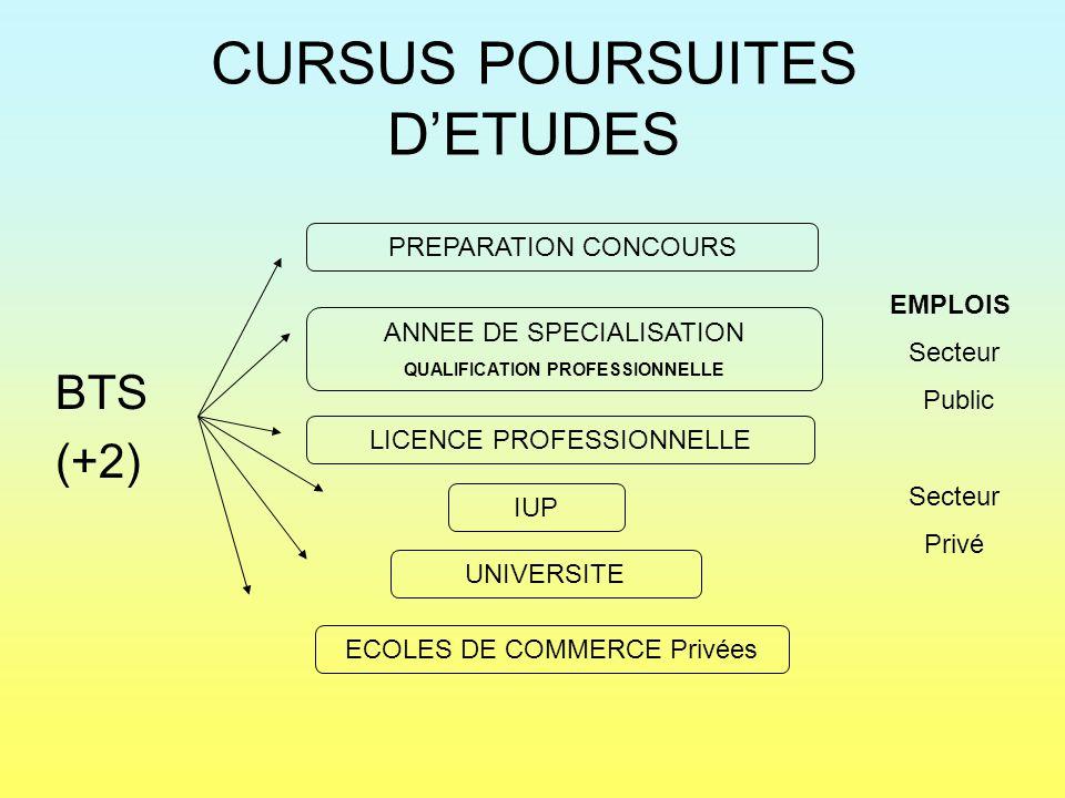 CURSUS POURSUITES D'ETUDES
