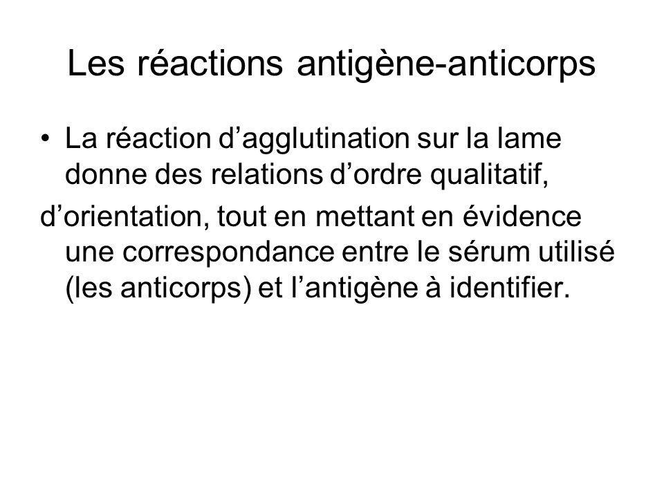 Les réactions antigène-anticorps