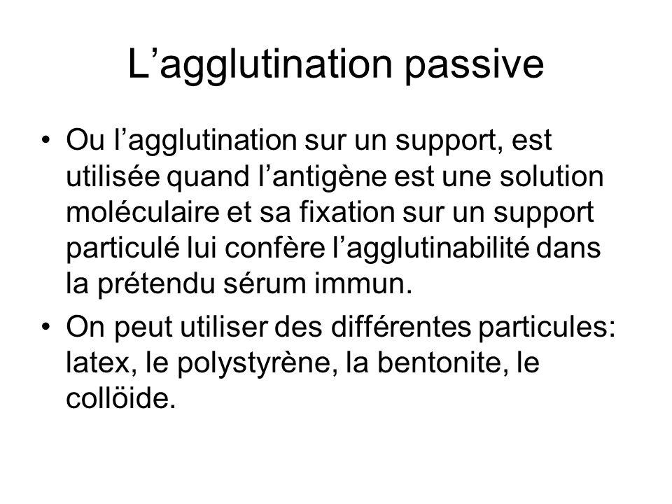 L'agglutination passive