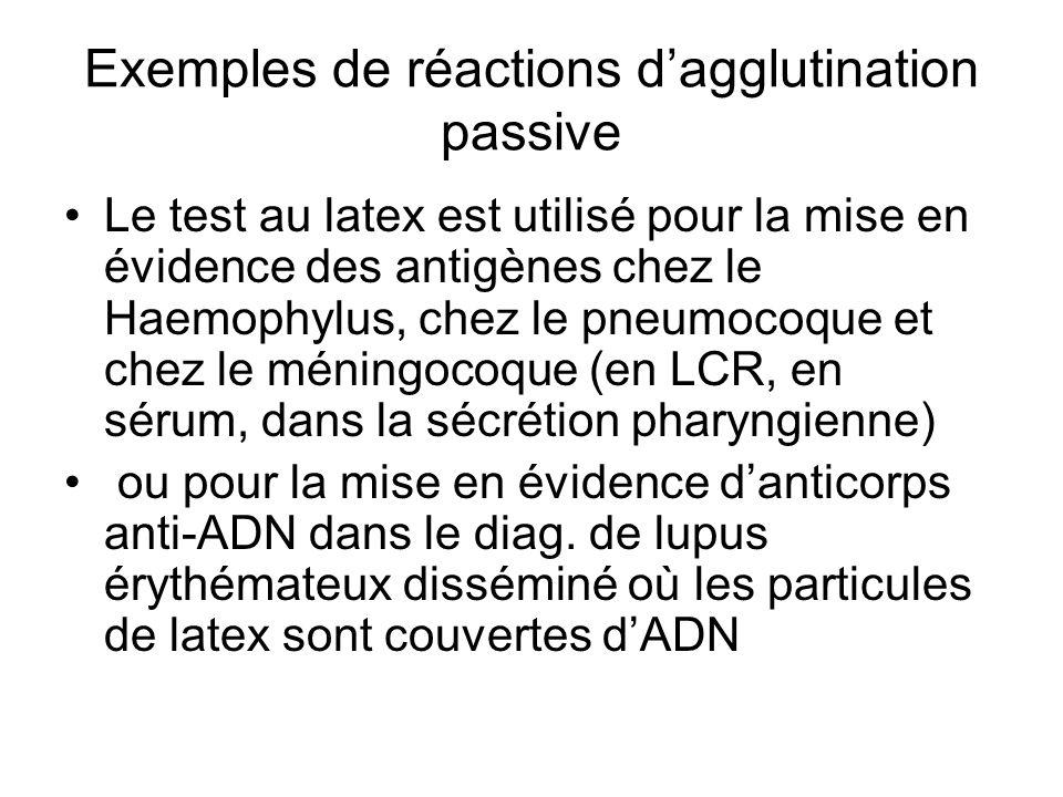 Exemples de réactions d'agglutination passive