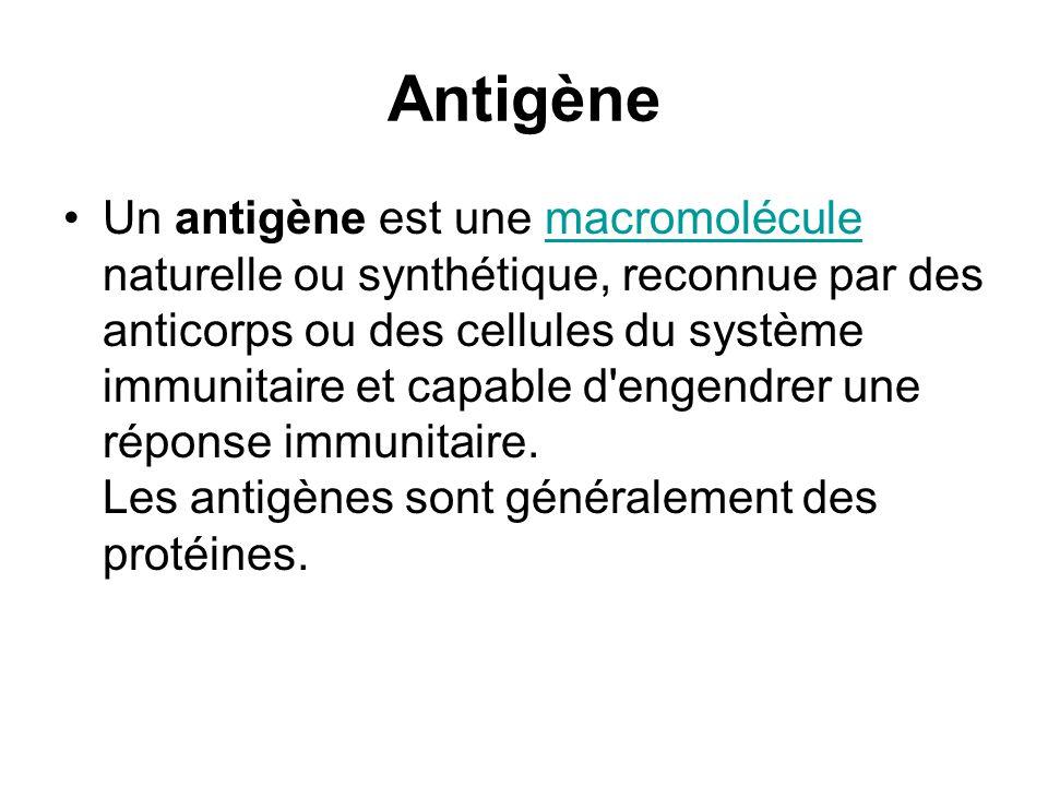 Antigène