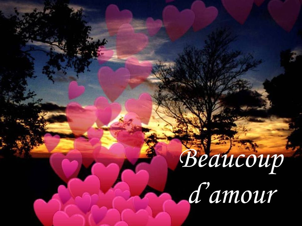 Beaucoup d'amour