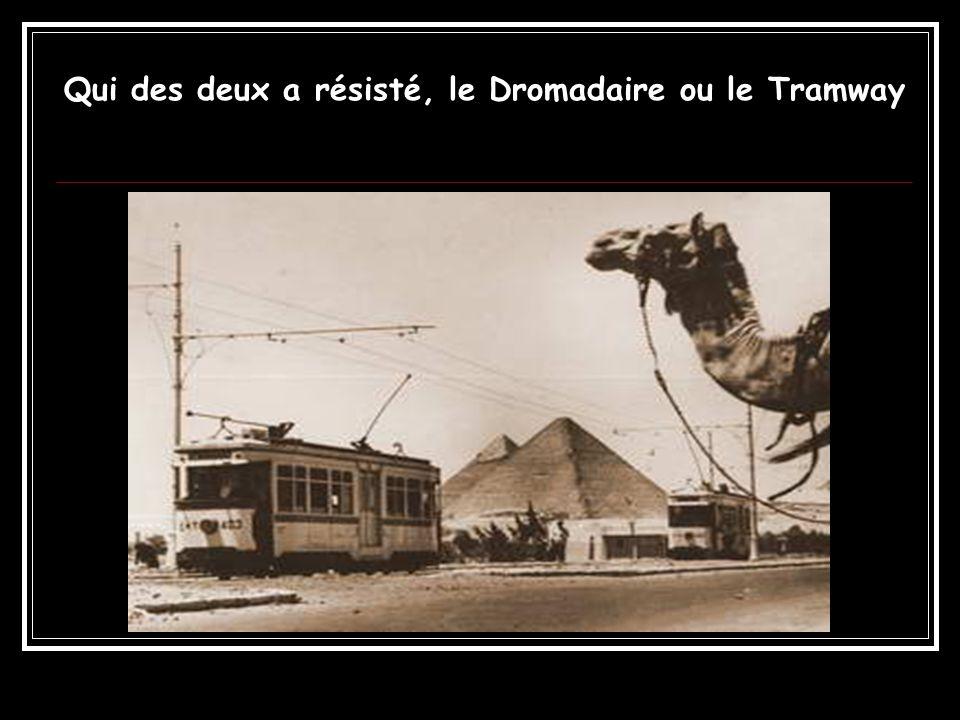 Qui des deux a résisté, le Dromadaire ou le Tramway