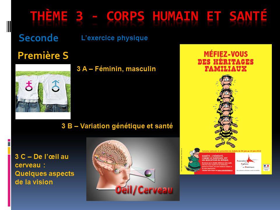 Thème 3 - Corps humain et santé