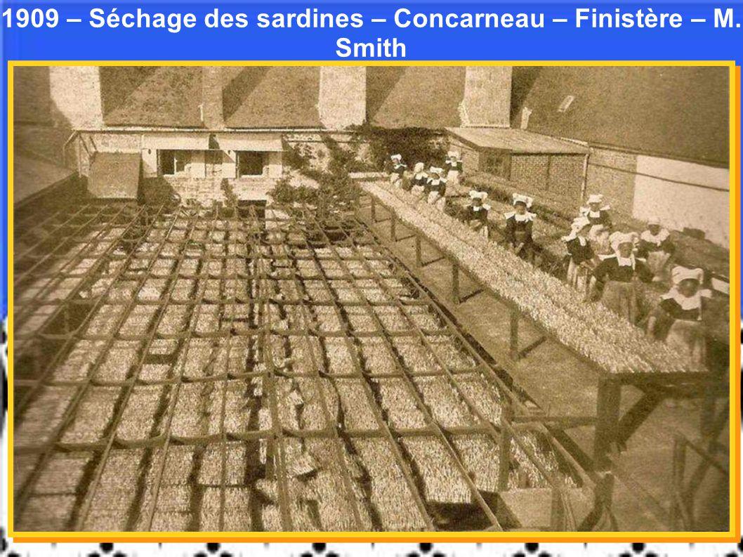 1909 – Séchage des sardines – Concarneau – Finistère – M. Smith