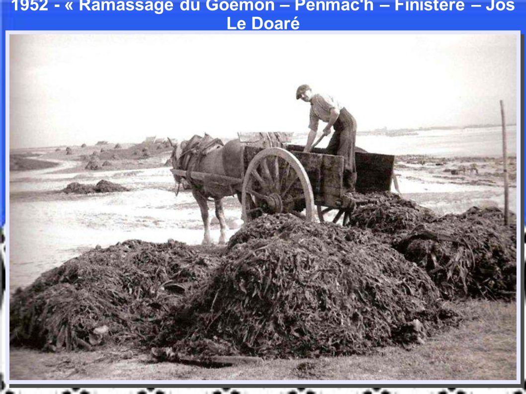 1952 - « Ramassage du Goémon – Penmac h – Finistère – Jos Le Doaré