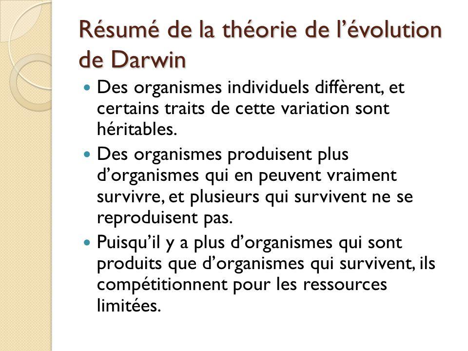 Résumé de la théorie de l'évolution de Darwin