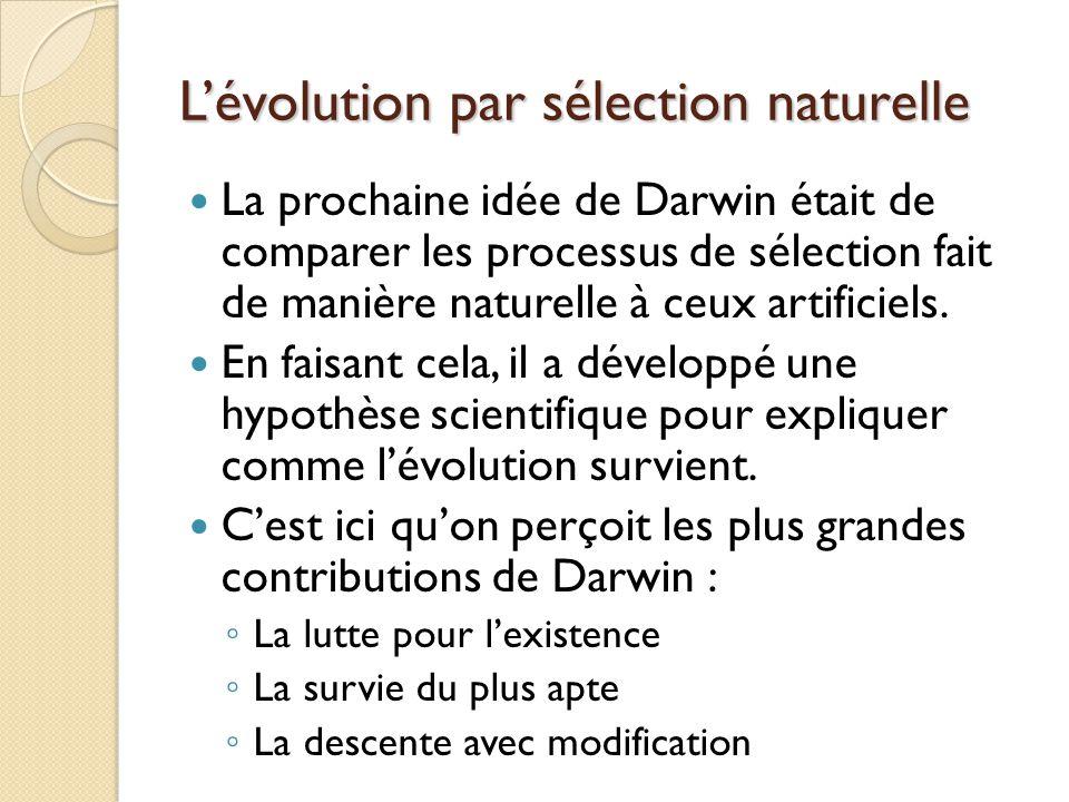 L'évolution par sélection naturelle
