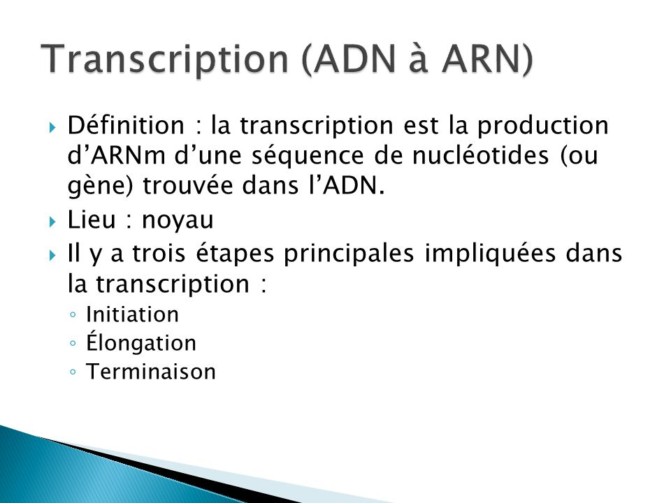 Transcription (ADN à ARN)