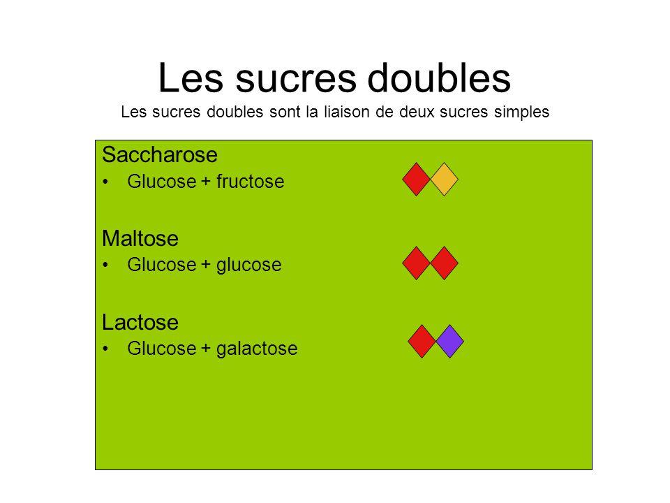 Les sucres doubles Les sucres doubles sont la liaison de deux sucres simples