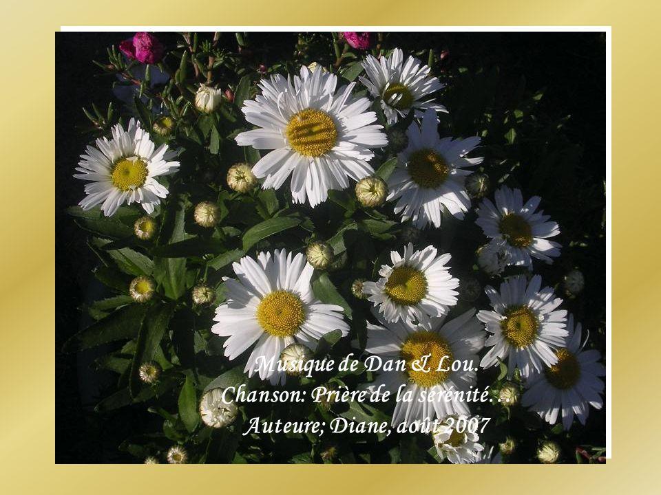 Musique de Dan & Lou. Chanson: Prière de la sérénité… Auteure; Diane, août 2007