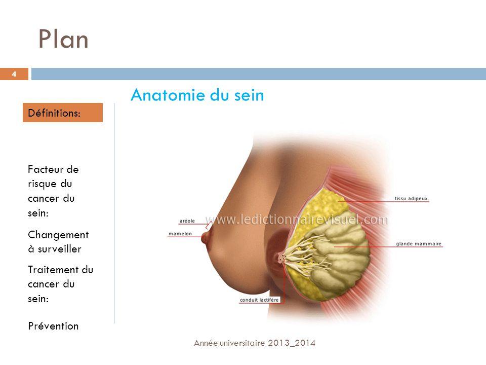 Plan Anatomie du sein Définitions:
